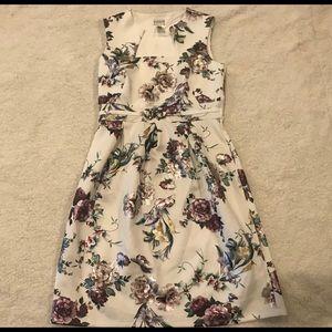 NWOT enfocus studio shift sleeveless floral dress